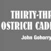 Thirty-Three Ostrich Cadenzas