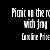 Picnic on the Rocks, with Frog