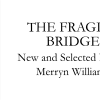 The Fragile Bridge